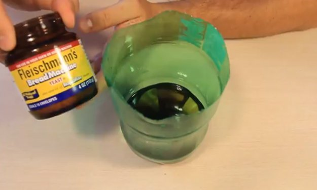 mosquito-mosquito-bites-mosquito-repellent-mosquito-trap-mosquitoes-homemade-mosquito-trap-natural-mosquito-repellent-mosquito-magnet-mosquito-control-how-to-get--rid-of-mosquitoes